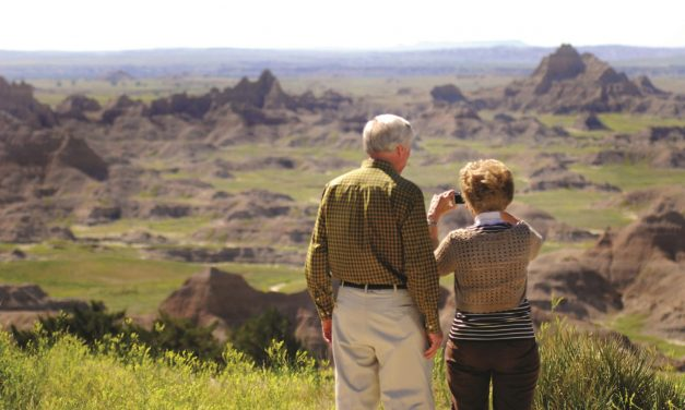 Road Trips with Adults, Kids and Retired Parents